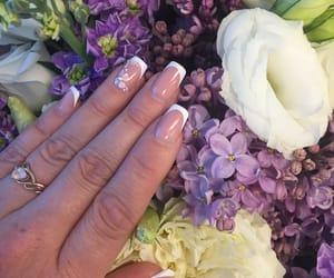 nails, nails design, and nails french image