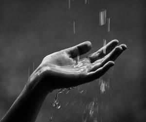 rain, hand, and black and white image