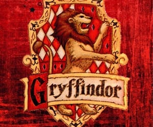 harry potter, magic, and griffindor image