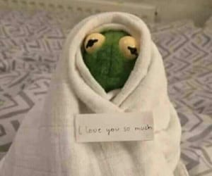 kermit, meme, and funny image