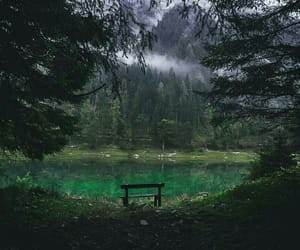 forest, lake, and mountain image