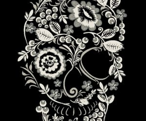 art, inspiration, and skull image