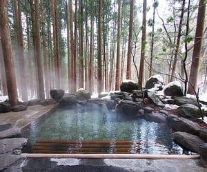 japan, nature, and pool image