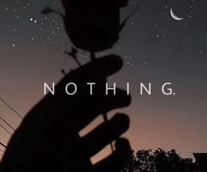 moon, nothing, and rose image