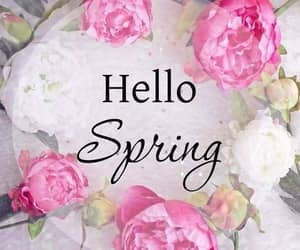 flowers, spring, and word image