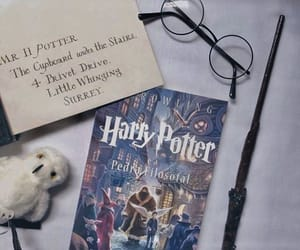 harrypotter, followme, and dailylife image