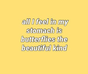 aesthetic, butterflies, and indie image