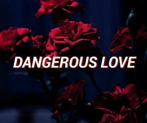dangerous, love, and ariana grande image