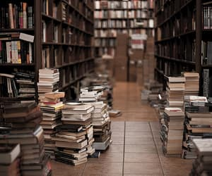 normal, books, and library image