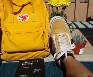 vans and yellow image