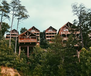 aesthetics, cabins, and color image