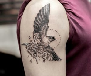 bird, girl, and ink image