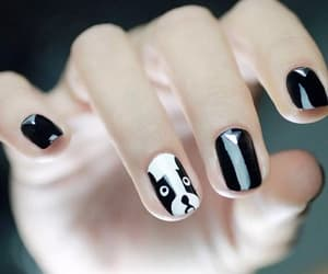 nails, black, and dog image