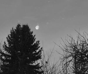 black and white, night, and shadow image