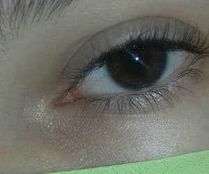 brown, eyes, and ✌ image