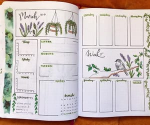 drawings, planner, and plants image