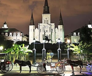 new orleans, travel, and photography image