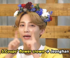 gif, Seventeen, and jeonghan image