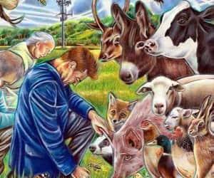 animal, animali, and animals image