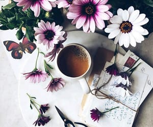 flowers, letters, and tea image