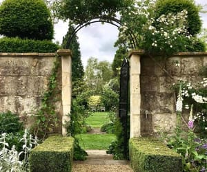 garden, green architecture, and england image