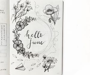june, notes, and plan image