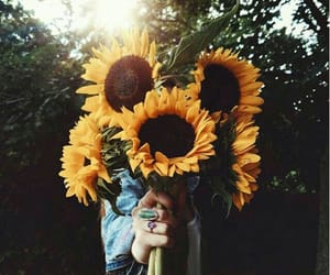 beautiful, outfits, and sunflowers image