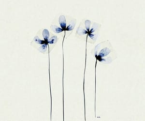 art, simple, and flower image