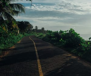 nature, road, and summer image