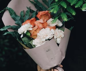 blossom, bouquet, and brown image