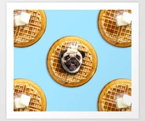 pugs, puppy, and funny dog image