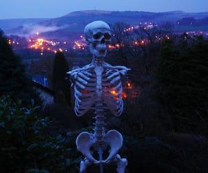 skeleton, grunge, and aesthetic image