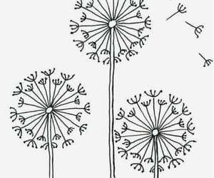 drawing, flower, and wish image