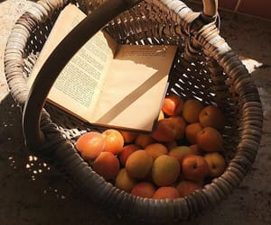 book, fruit, and basket image