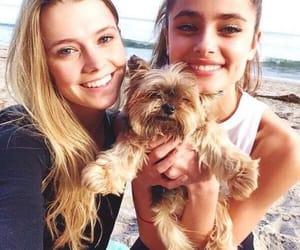 dog, friend, and girls image