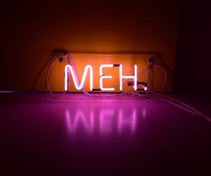neon, neon sign, and meh image