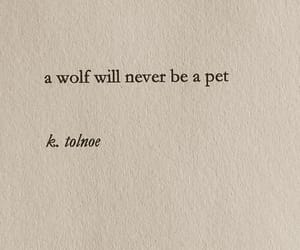 quotes, wolf, and text image