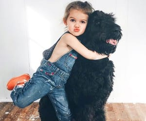 dog, kids, and photographie image