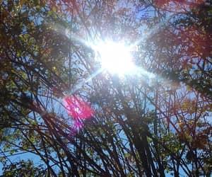 naturaleza, sol, and sin filtro image