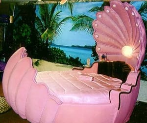 pink, bed, and shell image