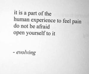 feels, books, and quotes image