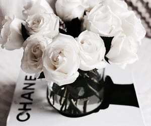 flowers, white, and chanel image