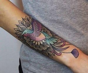 arm, colours, and kolibri image