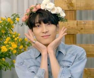 wonwoo image