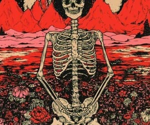 background, iphone, and skull image
