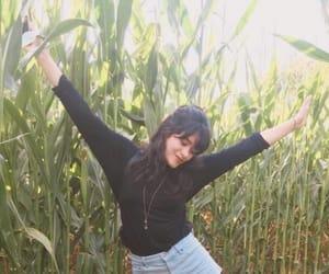 black, corn field, and dark hair image