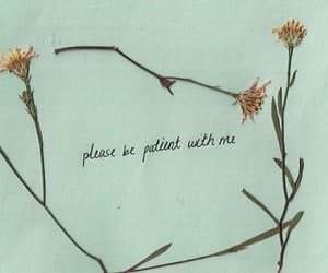flowers, quotes, and patient image