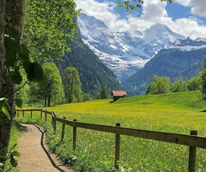 beauty, countryside, and nature image