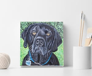 nursery room decor, dogs, and painting image