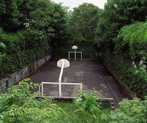 Basketball, green, and trees image